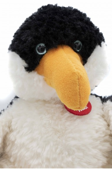 Pinguino Trudi